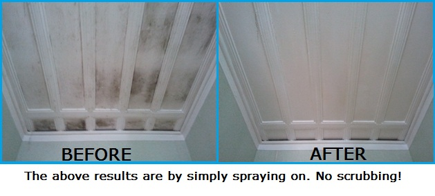 Best Way To Clean Mold Off Bathroom Ceiling K Wallpapers Design - Remove mold from bathroom ceiling