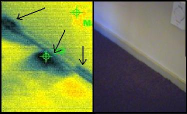 Mould Detection Using Infrared Amp Moisture Testing
